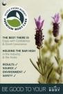 Whole Foods PREMIUM BODY CARE