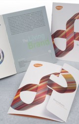 "Rebrand ""Boundless"" Brochure"